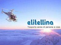 Elitellina