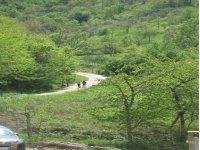 escursioni a piedi nella natura