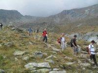 Nel cuore delle Alpi
