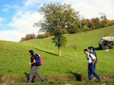 Zaino in Spalla Trekking