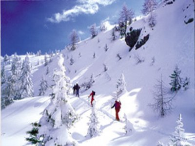 Guide Alpine Madonna di Campiglio Sci