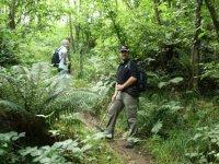 Orienteering nei boschi