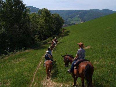 Extreme Adventure Passeggiate a Cavallo