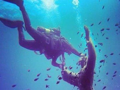 Poseidon scuba diving school