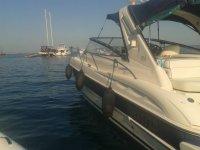 Motorboat moored