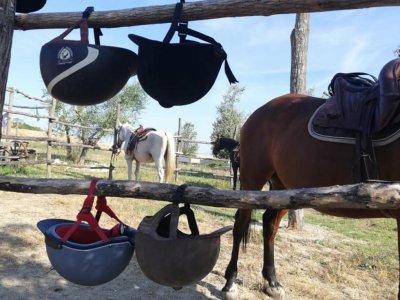 Centro equestre Samarcanda