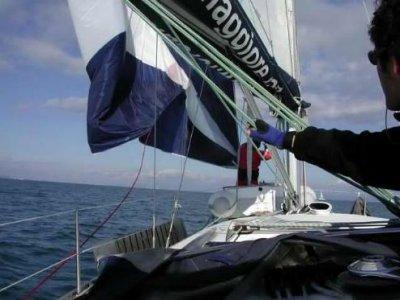 L'Orsa Maggiore S.r.l. Escursione in Barca