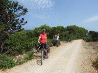 Escursioni in biciletta
