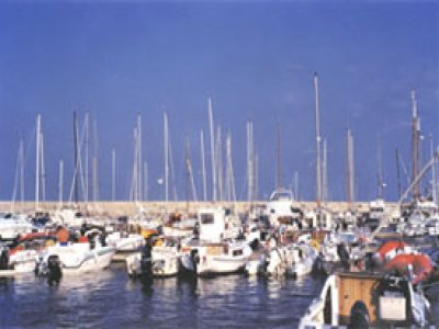 Rosa Peonia Servizi Turistici Escursioni in Barca