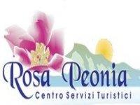 Rosa Peonia Servizi Turistici 4x4 Fuoristrada