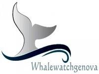 Whale Watch Genova