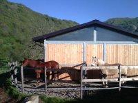 Ranch immerso nelle colline liguri