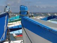 Tradizionali barche