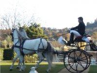 In carrozza, servizio matrimoniale