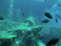 Swimming among the wrecks