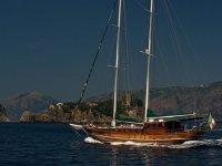 Sailing or motor sailing