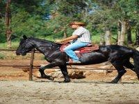 In the green on horseback