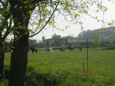 Centro Equitazione La Luna