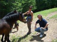 passeggiate a cavallo per cavalieri