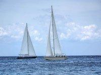 Cruise on a sailing boat. A dream!