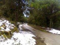 Natura in inverno