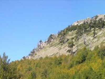 A day of trekking in the Pollino Park