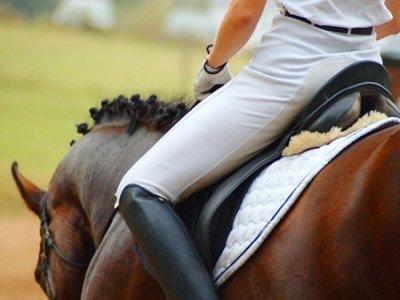 Discovering Veneto Passeggiate a Cavallo