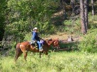 Scoprendo la natura a cavallo