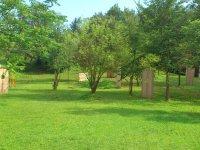Campo2
