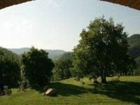 Excursions in Umbria