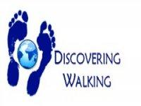 Discovering Walking