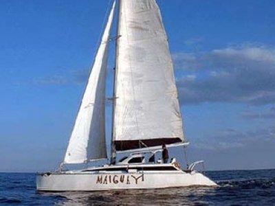 Maiguay