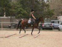 lezioni a cavallo in Sardegna