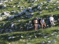 Trekking in Molise