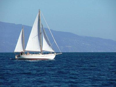 Seal Adventure Noleggio Barche