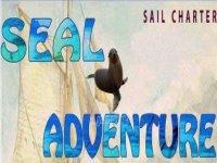 Seal Adventure Escursione in Barca