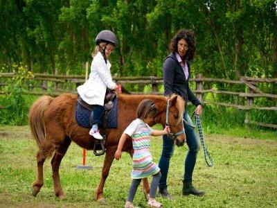 Steel Horses Passeggiate a cavallo