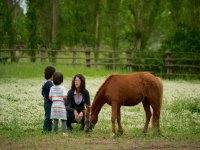 Avvicinandosi al mondo dei cavalli