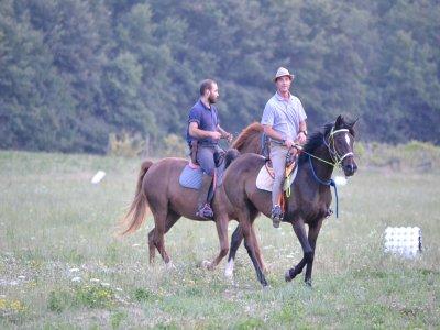 La Civetta Equitazione