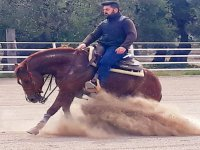 Corsi di equitazione americana, scuola Reining