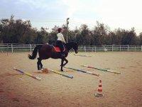 Corsi e lezioni di equitazione per ogni età