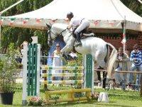 Corsi e allenamenti di equitazione nell oristanese