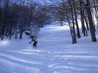Snowboard a Sestola