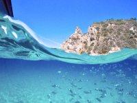FISH GROTTICELLE ORIGINAL DOME