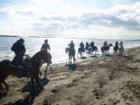Gare ed equitazione di campagna