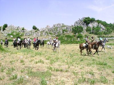 ASD Centro Equestre Posta Ruggiano