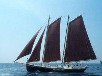 Corso di vela