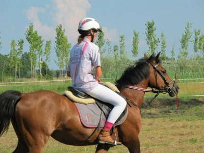 EquiGames Horse Club