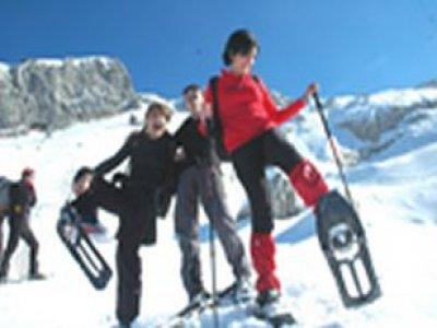 Accademia Alpina