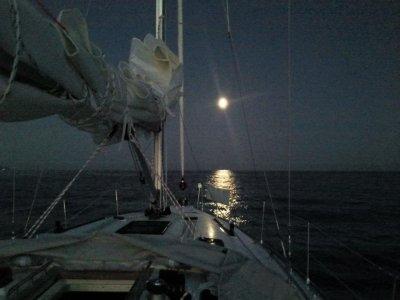 Progettoceano Escursione in Barca